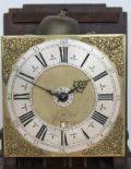 Dutch-Amsterdam-antique-wall-clock-Hasius-striking-alarm-walnut
